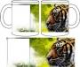Ar tigeri