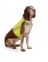 Drošības veste sunim